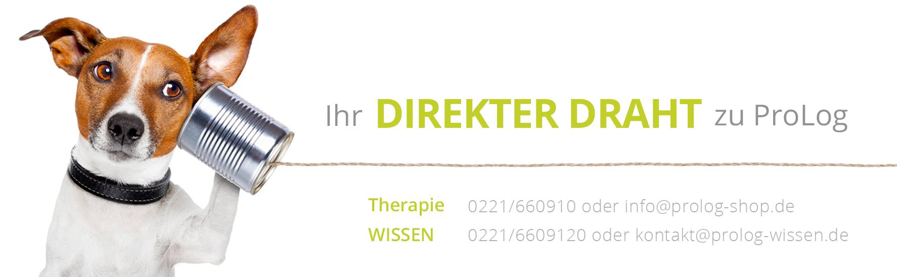 shop_banner_kontakt